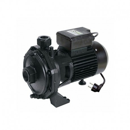 PRRBK200 Pompe à eau de surface Pro biturbine centrifuge Ribimex